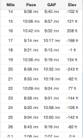 please note how ridiculous my pacing was for this race.
